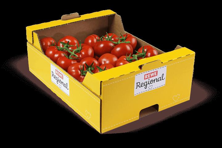 Karton-Tomate-Gemuesebau-Steiner_01