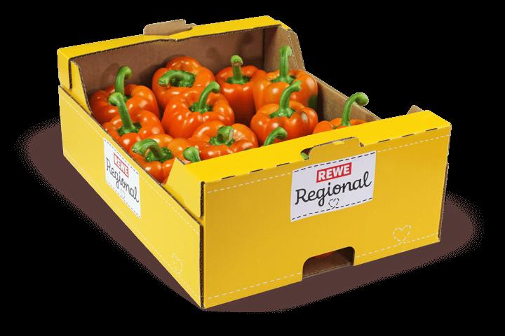 Paprika-Orange-Kiste_Gemuesebau-Steiner_01
