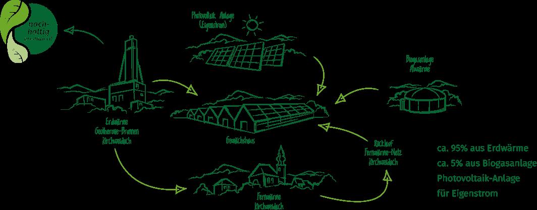 Das Energiekonzept von Gemüsebau Steiner - einzigartig und absolut CO2-frei