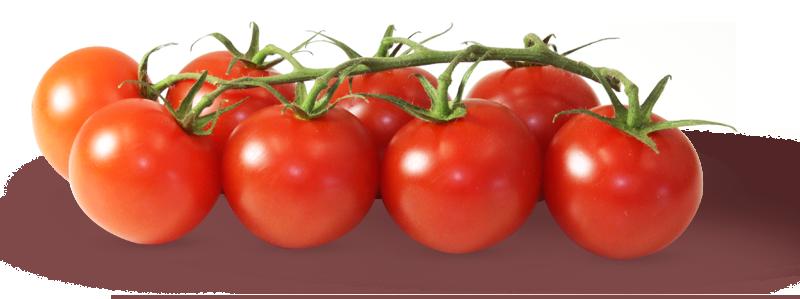 cherry-rispentomate-bei-rewepenny_gemuesebau-steiner