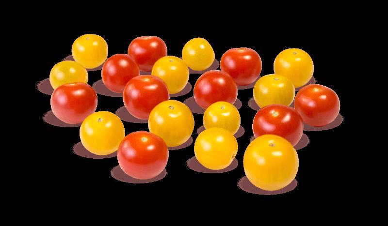 Cherry-Tomaten-Mix von Gemüsebau Steiner
