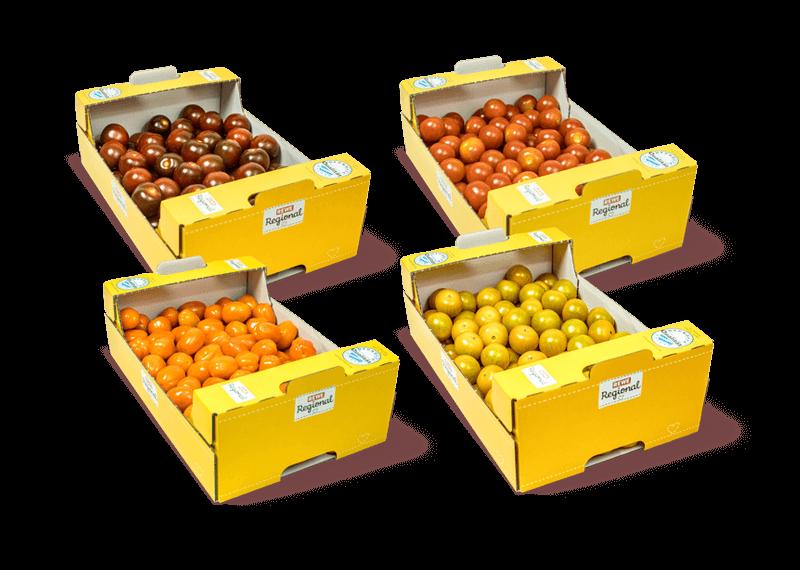 Snack-Tomate_alle_Kisten_mitSchatten