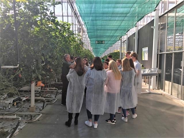Führung einer Gruppe bei Gemüsebau Steiner